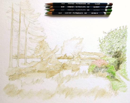 Adding colour to the foliage