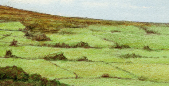 Close up landscape drawing - right